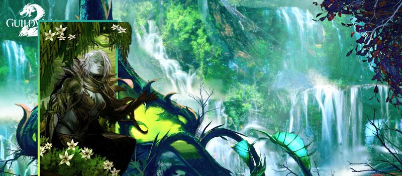 Guild Wars 2 Game Online